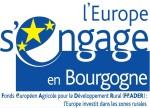 LOGO bourgogne_zones rurales