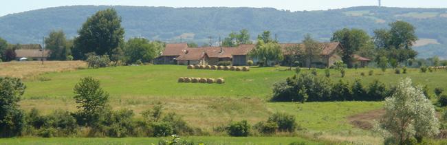 Paysage typique de la Bresse : haies, bottes de pailles et batiments à toiture rouge en arrière plan