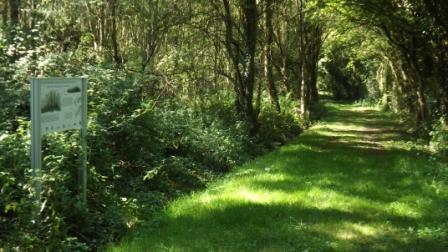 Sentier Ormes